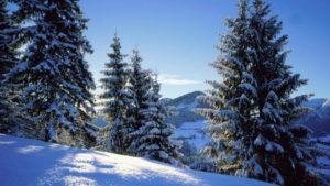 Почему выгодно покупать натуральный камень зимой?
